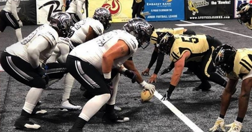 Image result for Carolina Cobras